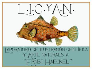 LICyAN - -Cuadrado Nombre Completo Grande